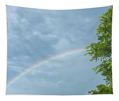 Rainbow And A Tree Tapestry