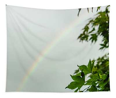 Rainbow With Leaves In Foreground Tapestry