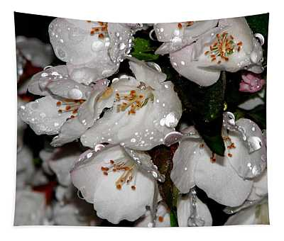 Raindrops On Crab Apple Blossoms By Rose Santucisofranko Tapestry