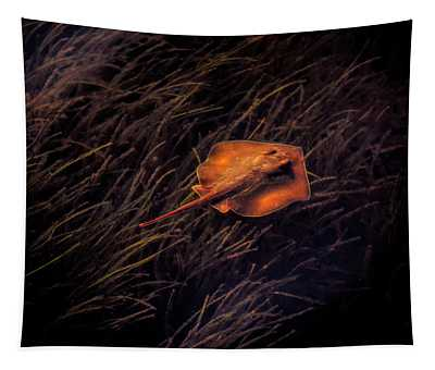 Ray In The Grass Flats Tapestry