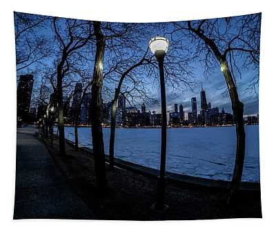 really wide view of Chicago's lakefront Tapestry