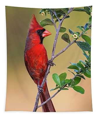 Red All Over Tapestry