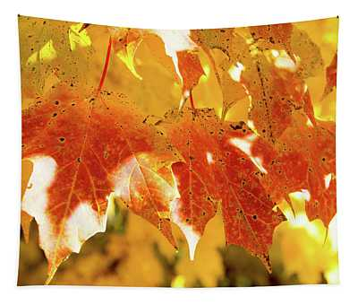 Red And Yellow Leaves Tapestry