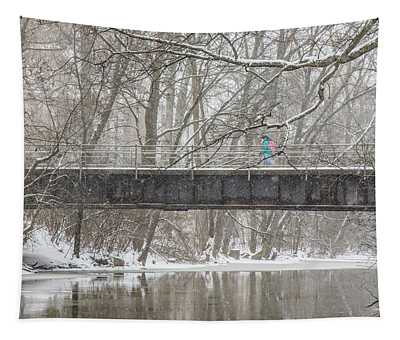 Red Cedar River Michigan State Winter  Tapestry