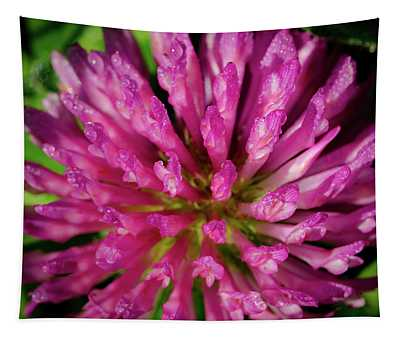Red Clover Flower Tapestry