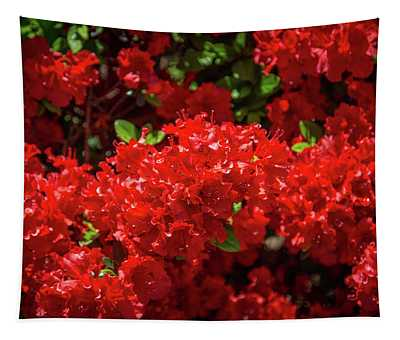 Red Flowers Tapestry