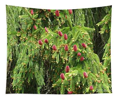 Red Pine Cones Tapestry