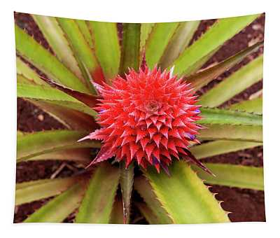 Red Pineapple Tapestry