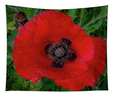 Red Poppy Tapestry