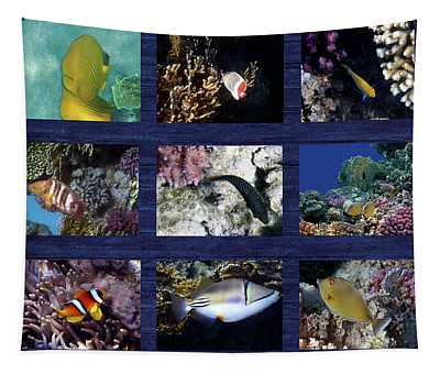 Red Sea Sealife Collage 6 Tapestry
