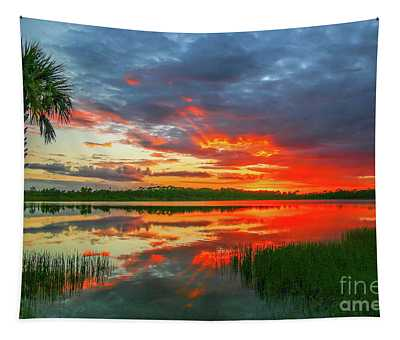 Red Sky And Palm Sunset Tapestry