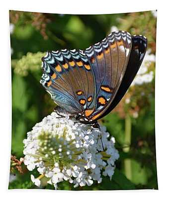 Red-spotted Purple On White Butterfly Bush Tapestry