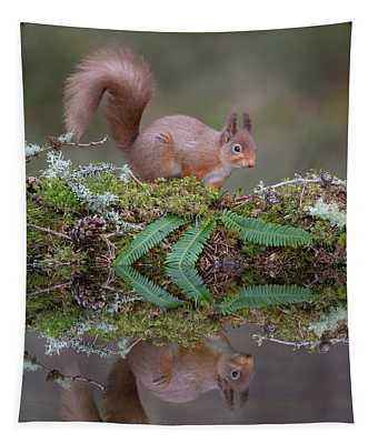 Red Squirrel Visits Woodland Pool Tapestry
