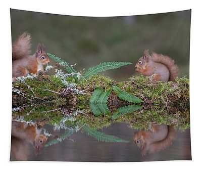Red Squirrels At A Woodland Pool Tapestry