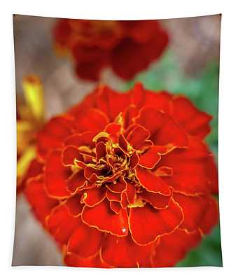 Red Summer Flowers Tapestry