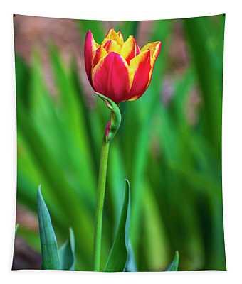 Red Tulip Flower Tapestry
