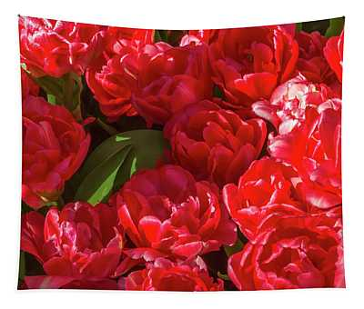Red Tulips In Bloom 1 Tapestry