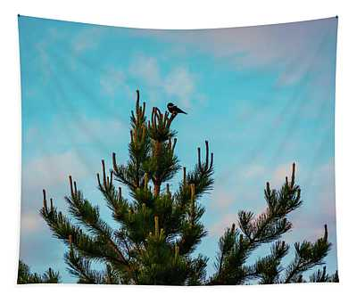 Red Winged Blackbird In A Conifer Tree Tapestry