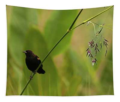 Red-winged Blackbird On Alligator Flag Tapestry