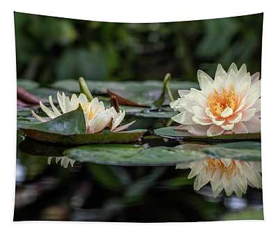 Delicate Reflections Tapestry