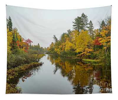 Reflections In Autumn Tapestry