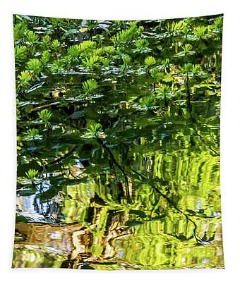Reflections In Green Tapestry