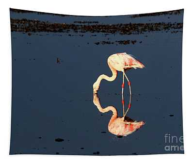 Reflections Of A Chilean Flamingo Tapestry