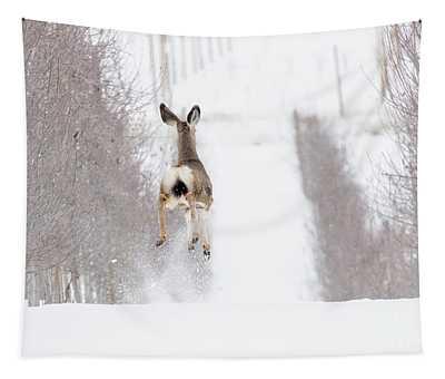 Reindeer In Training Tapestry