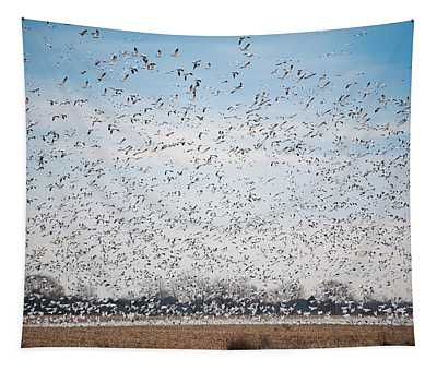 Resting On The Flyway Tapestry