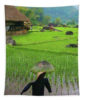 Rice Fields Vietnam Scarecrow Green  Tapestry