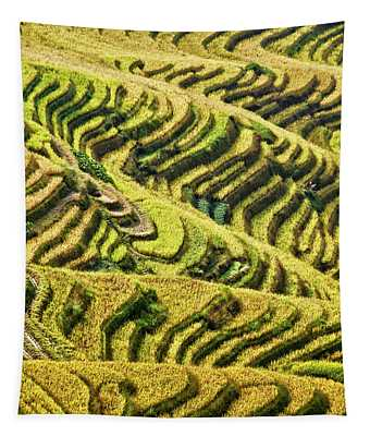 Rice Terraces In China Tapestry