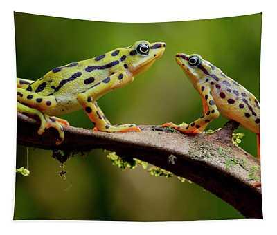 Rio Pescado Harlequin Toad Pair On Branch, Azuay, Ecuador Tapestry