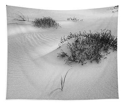 Ripples, Crane Beach Ipswich Ma. Tapestry