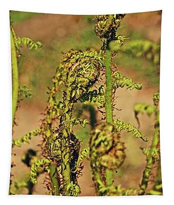 Rivington Terraced Gardens. Fern Frond. Tapestry
