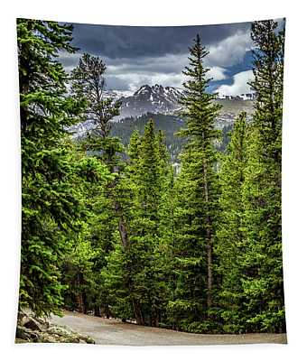 Road To Echo Lake, Colorado Tapestry