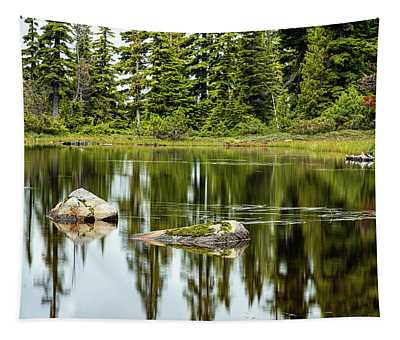Rocks In A Mountain Pond Tapestry