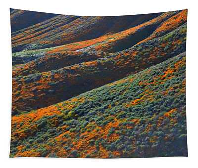 Rolling Hillsides Of Color Tapestry