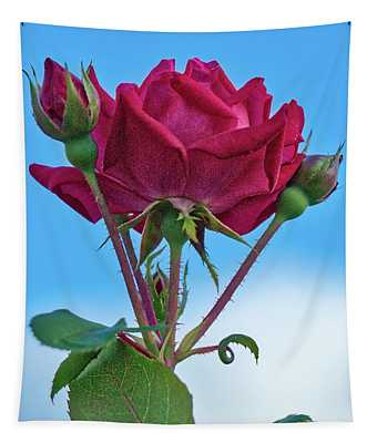 Rose With Buds Tapestry