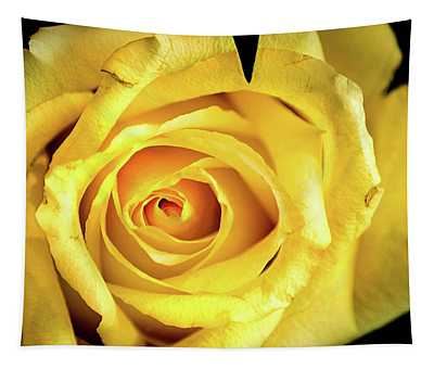 Rose-yellow Tapestry