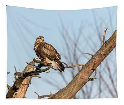 Rough-legged Hawk 2018-4 Tapestry