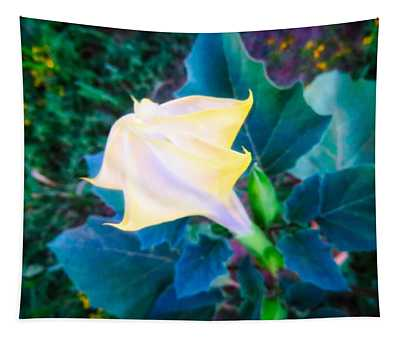 Tapestry featuring the photograph Sacred Datura - Partial Bloom by Judy Kennedy