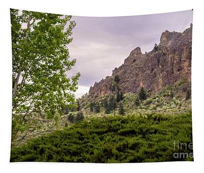Tapestry featuring the photograph Saddle Rock In Wenatchee, Wa by Mae Wertz