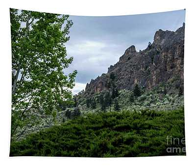 Tapestry featuring the photograph Saddle Rock by Mae Wertz