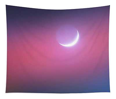 Tapestry featuring the photograph Sagitarrius Waxing Moon 2 by Judy Kennedy