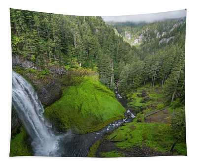 Salt Creek Falls And Gorge Tapestry