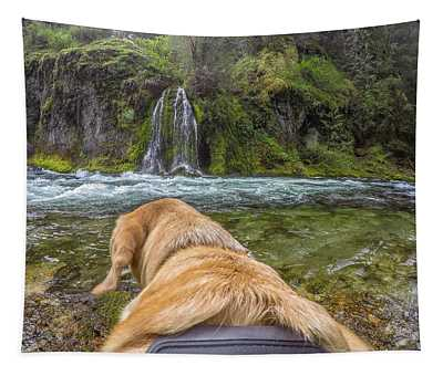 Salt Creek Falls By Photo Dog Jackson Tapestry