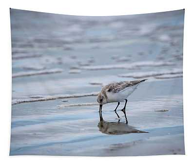 Sanderling Foraging Tapestry