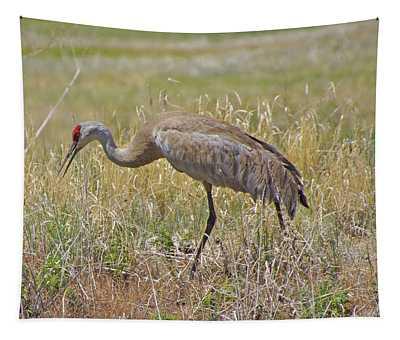 Sandhill Crane  Tapestry