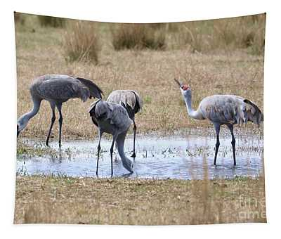Sandhills Sip And See  Tapestry