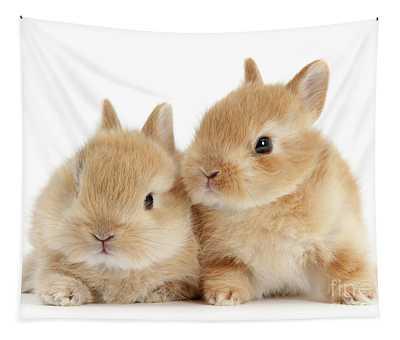 Sandy Love Bunnies Tapestry